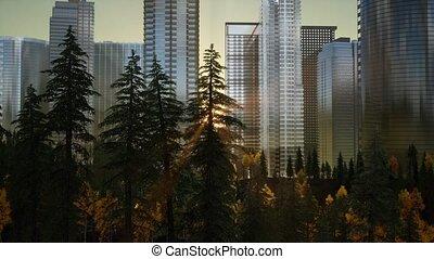 Forest hillside and city landscape