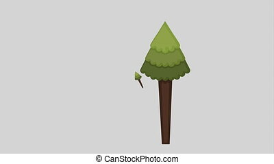 Forest icon design, Video Animation
