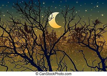 Forest illustration for halloween