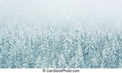 Forest In Heavy Snowfall