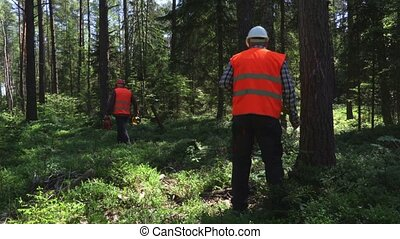 Forest keeper speak to the walkie talkie and mark the trees