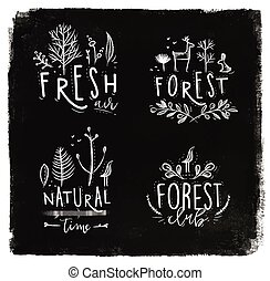 Forest labels chalk