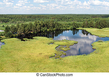 Forest lake from a height in the taiga - forest lake from a ...