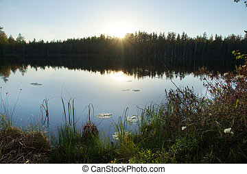 Forest lake on summer evening, smooth water surface with reflection of blue sky