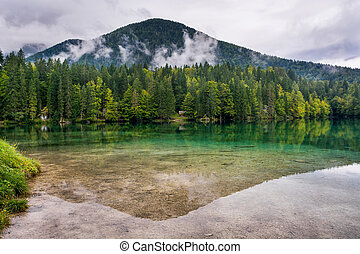 Forest lake panorama. Laghi di Fusine under Mangart, Italy.