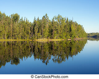 forest lake shore