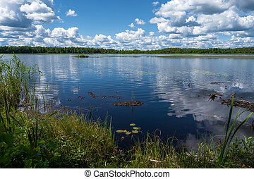 Forest lake with white cumulus clouds reflecting in the water.