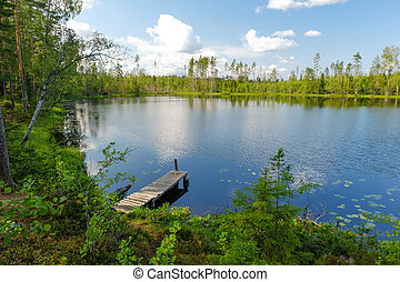Forest lake with wooden pier platform for fishing. Summer sunny day nature landscape