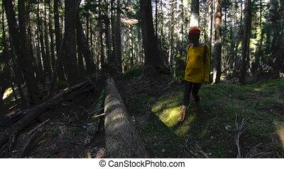 forest., lent, clã©, elle, sain, mains, motion., 60, appareil photo, hipster, bas, fps, promenades, actif, par, girl-photographer