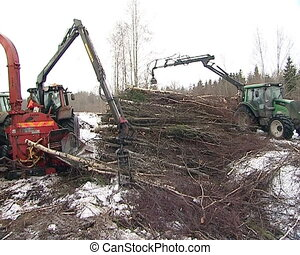 forest management biofuel - forest management and biofuel...