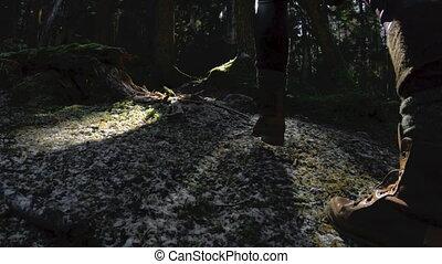 forest., marche, lent, clã©, elle, sain, mains, motion., 60, appareil photo, par, bas, fps, promenades, actif, hipster, girl, vue, arrière, girl-photographer