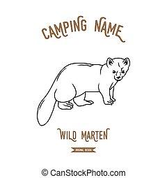 Forest marten vector illustration. European animals...