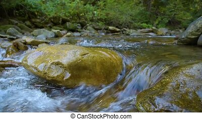 Forest Mountain River - Forest Mountain Stream. Forest...