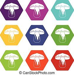 Forest mushroom icon set color hexahedron