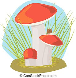 Forest mushroom with grass and snail