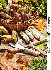 Forest mushrooms in a basket prepared for dinner