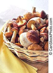 Forest mushrooms in a wicker basket