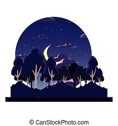 forest night trees moon natural landscape