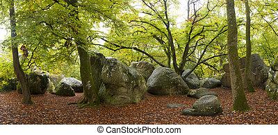 Forest of Fontainebleau, Seine-et-marne, Ile de France,...