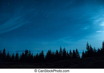 Forest of pine trees under moon and blue dark night sky with...