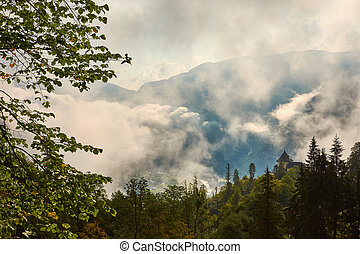Forest on a hill between the mountains above Hallstatt in Austria, with clouds and sky background