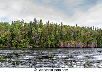Forest on coast of Valaam island, Russia - Forest on the...