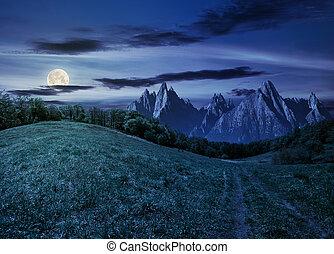 forest on grassy hillside in tatras at night - Composite...