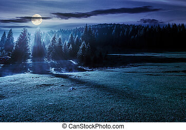 forest on grassy meadow at foggy night in full moon light....