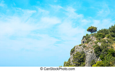 Forest on rocky cliffs against blue sky
