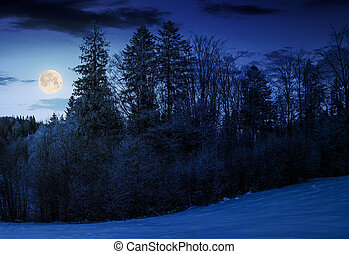 forest on snowy hillside at night in full moon light....