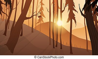 Forest on the mountains and twilight sunset scenery landscape