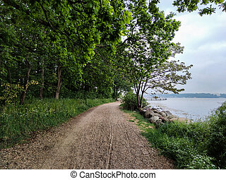 Photo of orest path on the edge of the Baltic Sea at cloudy summer day