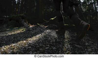 forest., pieszy, powolny, klucz, jej, zdrowy, siła robocza, ...