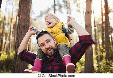 forest., piggyback, 寄付, 乗車, 父, 息子, 秋, 成長した, よちよち歩きの子