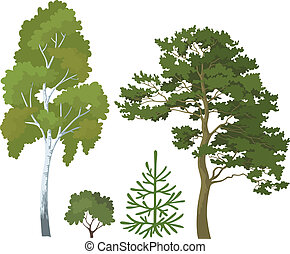 Forest plants set - Set plants: birch, pine, fir tree and...