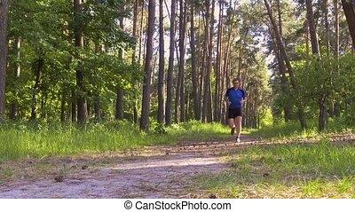 forest., powolny, rano, ruch, wyścigi, człowiek