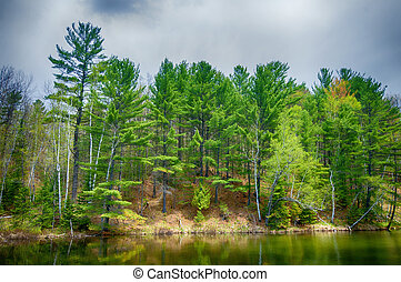 Forest reflecting on calm lake in Northern Ontario, Canada