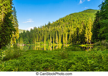 Forest reflection on the lake on the background of mountains
