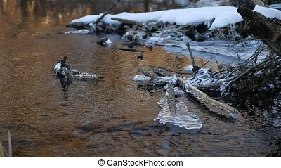 Forest river flowing beautiful frozen ice on a dry branch ...
