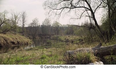 Forest river in spring. Garbage lying on the grass. Damage...