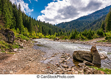 forest river with stones on shores - mountain river with...
