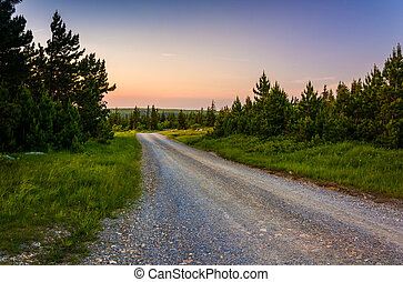 Forest Road 75 at sunset, in Dolly Sods Wilderness, ...