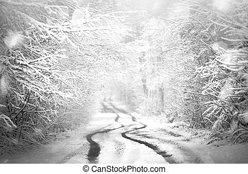 Forest road covered with snow. Magical snowy road -...