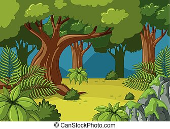 Forest scene with big trees