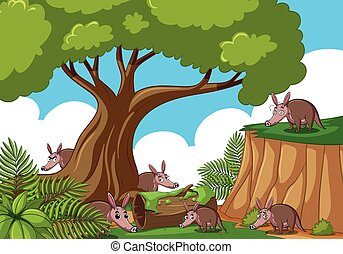 Forest scene with many anteaters