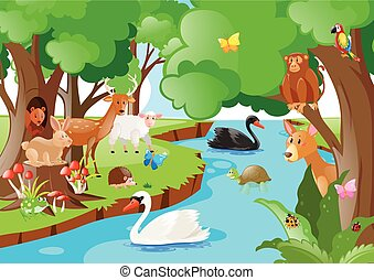 Forest scene with many types of animals