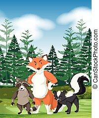 Forest scene with wild animals