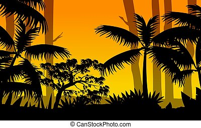 Forest scenery at sunset with tree silhouette