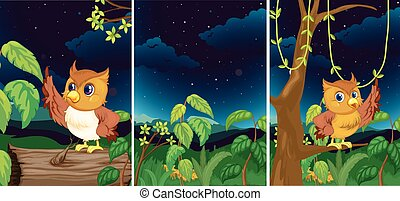 Forest scenes with cute owls
