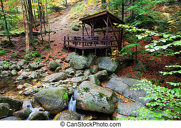 Forest Shelter by the Stream - Shelter by the stream on...